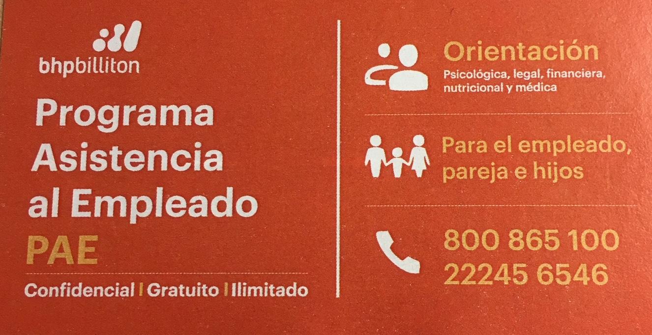 Programa de Asistencia al Empleado (PAE)