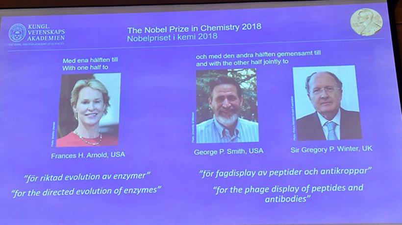 Otorgaron el Nobel de Química a tres científicos por los avances en el desarrollo de proteínas