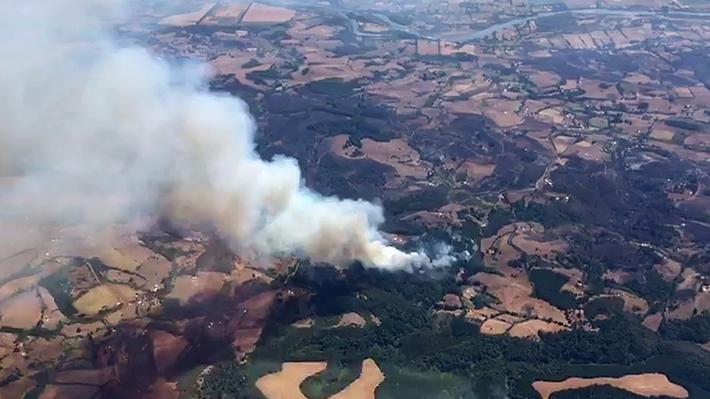Onemi reporta 40 incendios forestales entre El Maule y Magallanes: Cuatro regiones mantienen comunas con Alerta Roja